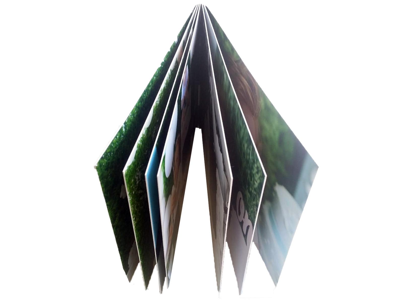 nextalbum foto carte